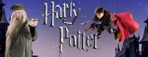 Website_HarryPotterNight