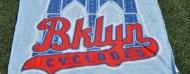 Homestand 8/29/16 – 8/31/16 vs AuburnDoubledays